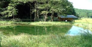 古田の自然と農業体験のイメージ